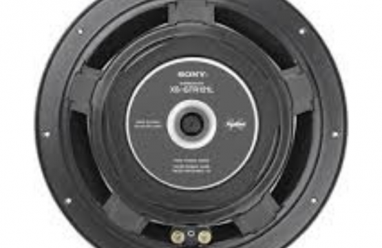 Sony Dual Voice Coil Subwoofer XS-GTR121LD